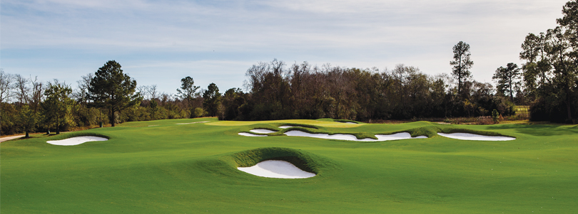 The Clubs at Houston Oaks — Houston's Family Paradise