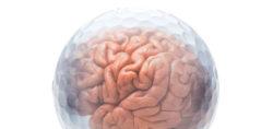 Golf Ball Brain