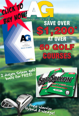 2019 DFW Passbook and AVIDGOLFER Magazine Subscription