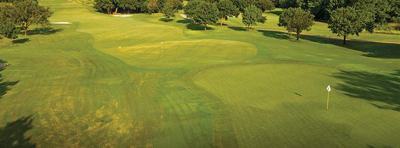 Course Feature – Grapevine Golf Course